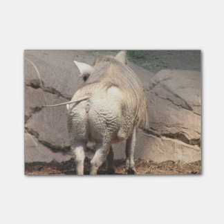 Warthog detrás post-it® nota