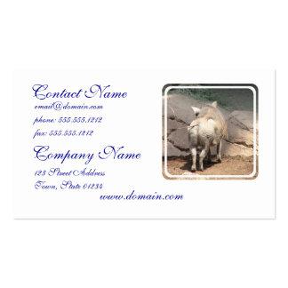 Warthog detrás plantilla de tarjeta de negocio