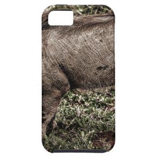 Warthog. Funda Para iPhone 5 Tough