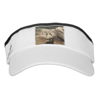 Warthog Headsweats Visor
