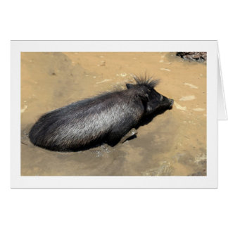 Warthog in mud greeting card