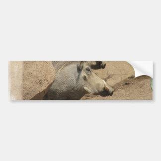 Warthog Pair Bumper Sticker
