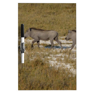 Warthog Parade Tom Wurl Dry Erase Board