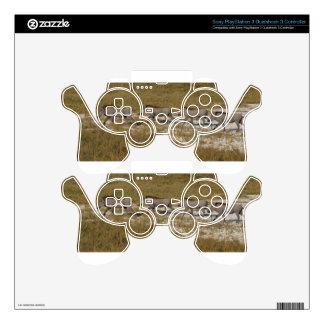Warthog Parade Tom Wurl PS3 Controller Skin