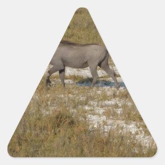 Warthog Parade Tom Wurl Triangle Sticker