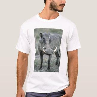 Warthog Phacochoerus africanus) Masai Mara T-Shirt