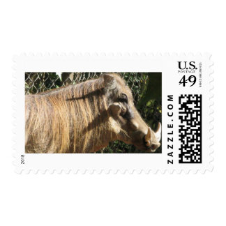 Warthog Postage Stamps