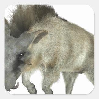 Warthog que corre a la derecha pegatina cuadrada