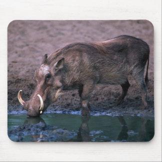 Warthog - verraco grande alfombrilla de raton