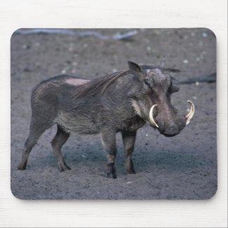 Warthog - verraco grande alfombrilla de ratones