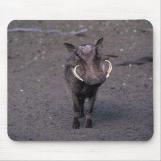 Warthog - verraco grande alfombrillas de raton