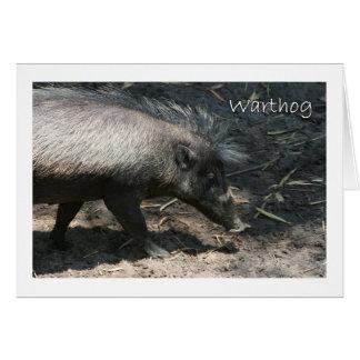 Warthog walking by palmetto greeting card