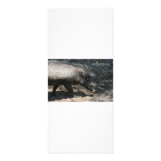 Warthog walking by palmetto full color rack card