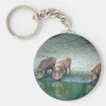 Warthogs Basic Round Button Keychain