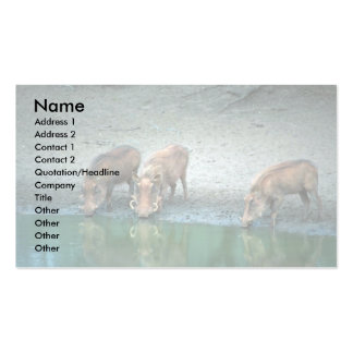 Warthogs Business Card Templates
