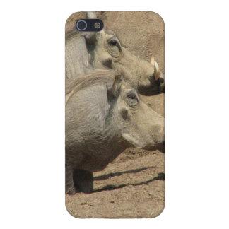 Warthogs iPhone 5 Fundas