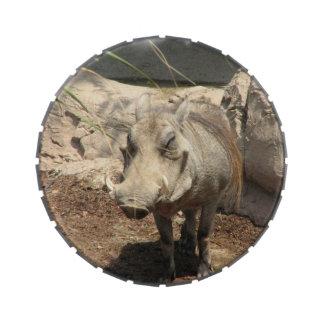 Warthogs Frascos De Dulces