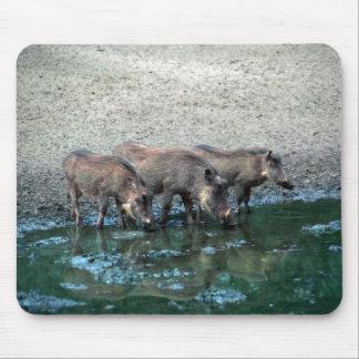 Warthogs Alfombrilla De Raton