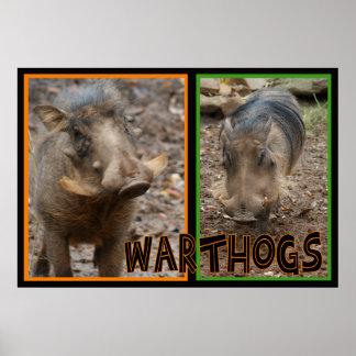 WARTHOGS - WILD ANIMAL POSTER