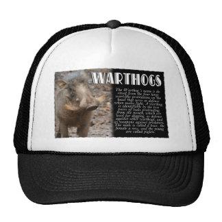 WARTHOGS with Description Trucker Hat