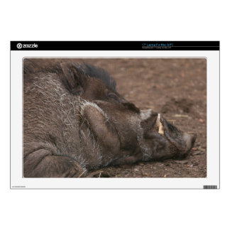 """Warty Hog Decals For 17"""" Laptops"""