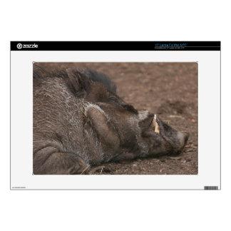 "Warty Hog 15"" Laptop Decals"