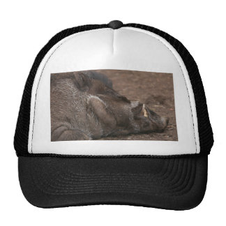 Warty Hog Trucker Hat
