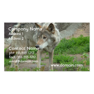 Wary Wolf Business Cards