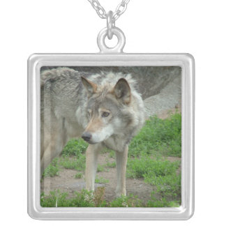 Wary Wolf Necklace