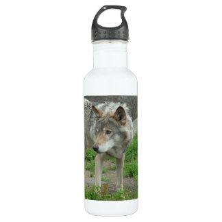 Wary Wolf 24oz Water Bottle