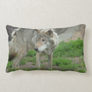 Wary Wolf Pillow