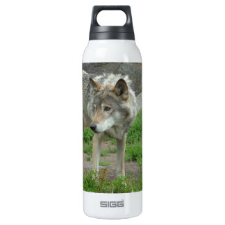 Wary Wolf SIGG Thermo 0.5L Insulated Bottle