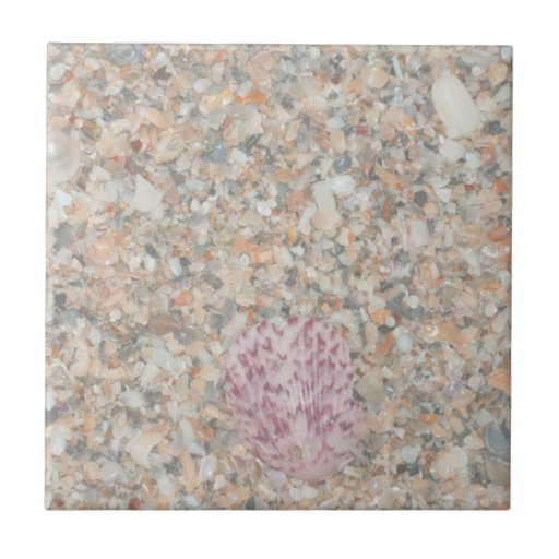 washed crushed shells scallop beach image small square tile