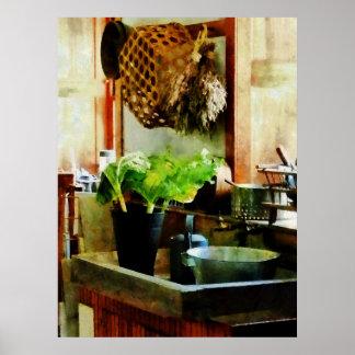 Washing Garden Greens Poster