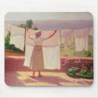 Washing in the Sun Mouse Pad