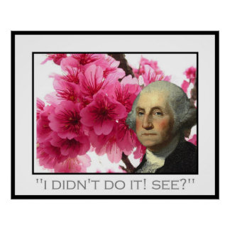 Washington and the cherry tree poster