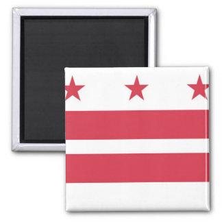 Washington D.C. Flag Fridge Magnet
