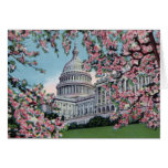 Washington DC Capitol Hill Cherry Blossoms Card