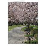 washington dc cherry blossom greeting card
