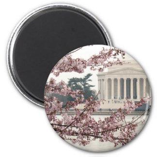 Washington DC de la flor de cerezo Imán Redondo 5 Cm