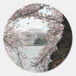 Washington DC de la flor de cerezo Etiqueta Redonda