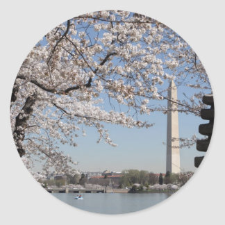 Washington DC de la flor de cerezo Pegatina Redonda