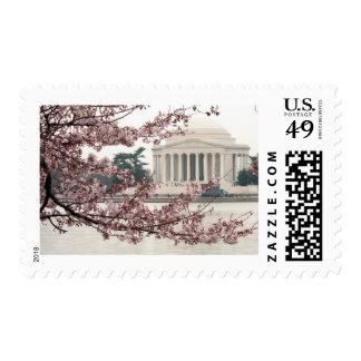 Washington DC de la flor de cerezo Sello