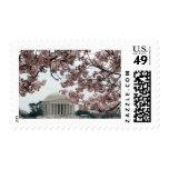 Washington DC de la flor de cerezo Sello Postal