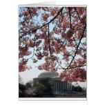 Washington DC de la flor de cerezo Tarjeta