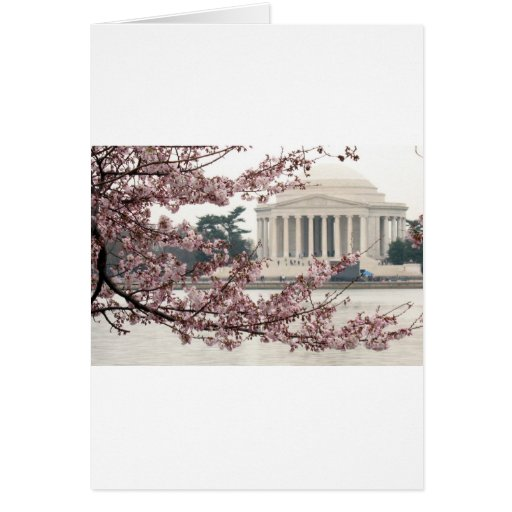 Washington DC de la flor de cerezo Tarjeta De Felicitación