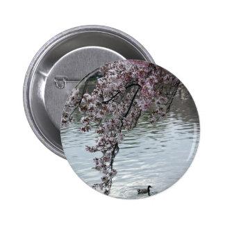 Washington DC de las flores de cerezo Pin Redondo 5 Cm