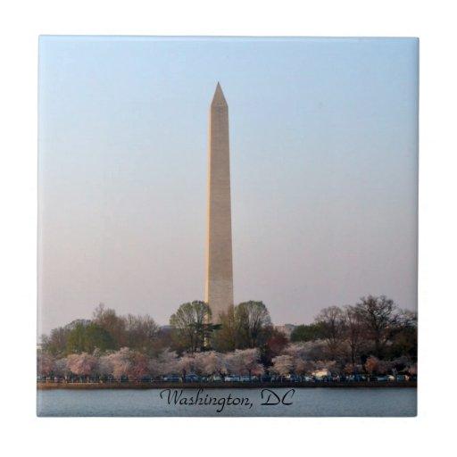 Washington, DC en la teja del tiempo de la flor de