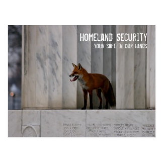 Washington, DC:  Homeland Security Humor Postcard