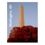 Washington, DC:  Monumento de Washington en caída Tarjeta Postal